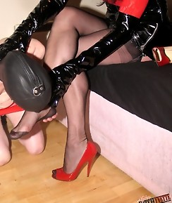Yvette has a gimp to play with today and he loves her high heels